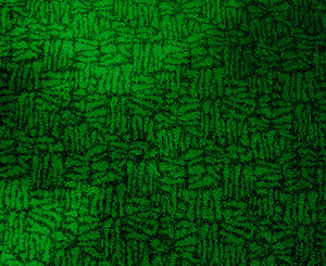 Grüner teppich  Kostenlose stock Fotos - Rgbstock - Kostenlose bilder | Grüner ...
