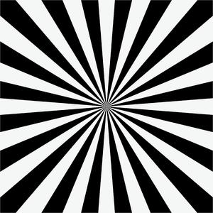 zebra vector pattern